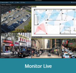 Luxriot EVO Live Monitoring